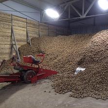Построенное овощехранилище успешно эксплуатируется. Техника осуществляет переработку картофеля хранящегося навалом.